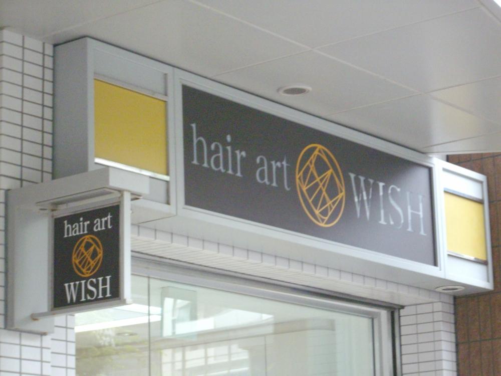 hair art wish